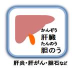 肝臓・胆のう