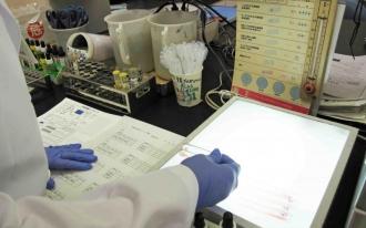 輸血検査業務02